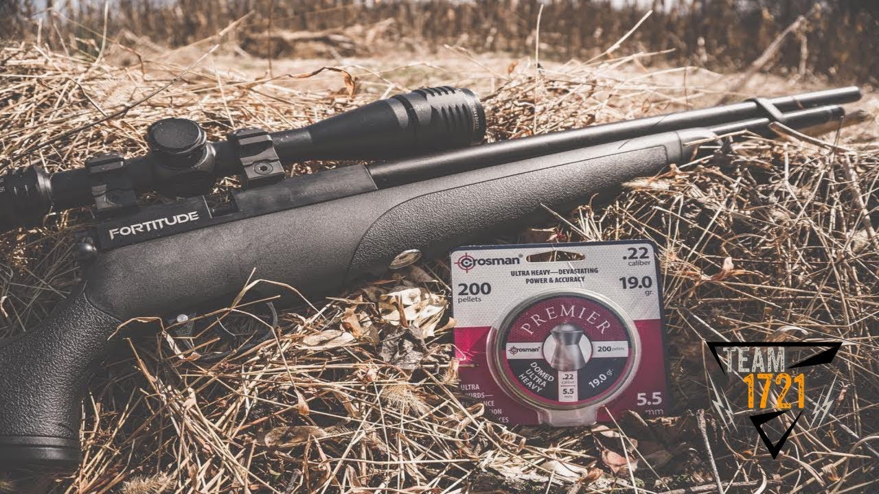 NEW Crosman Fortitude Gen2 .22 cal (First Look)