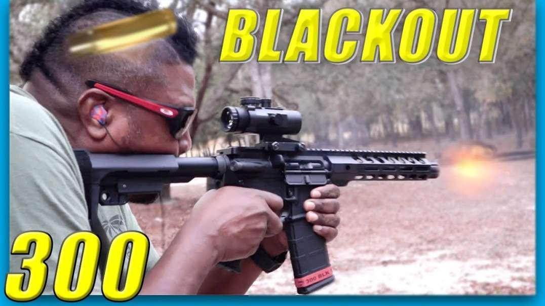 Palmetto State Armory PSA 300 AAC Blackout AR-15 Pistol