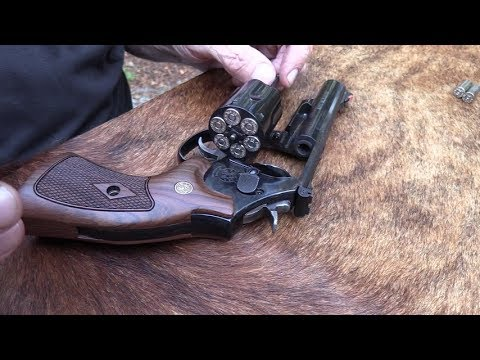 Smith & Wesson bone collector model 460