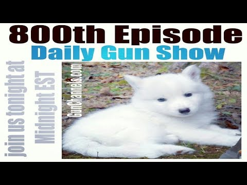 FREE Patch Friday - Daily Gun Show #800