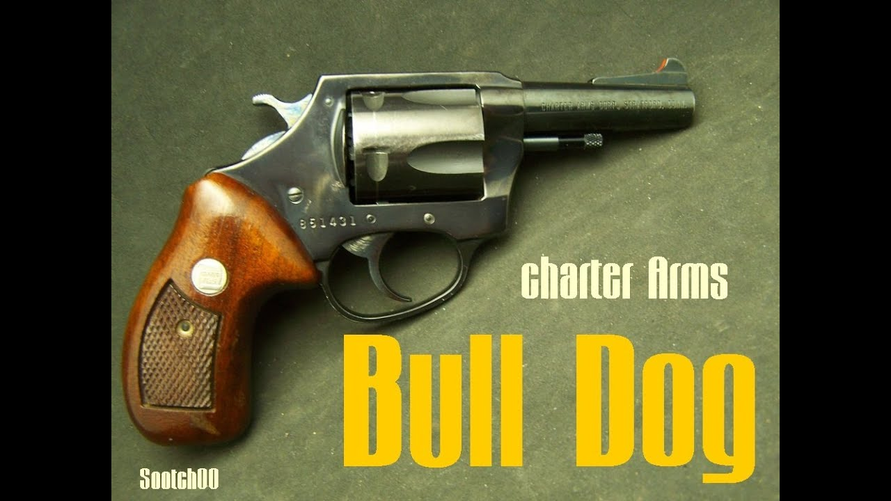 Charter Arms Bull Dog 44 Special