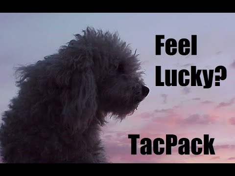 Feeling Lucky Punk? March TacPack