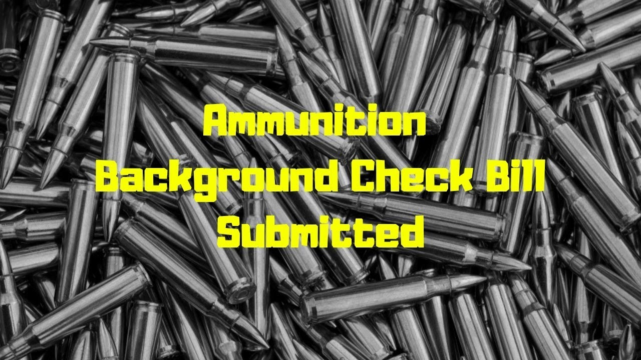 Universal Background Check On Ammunition