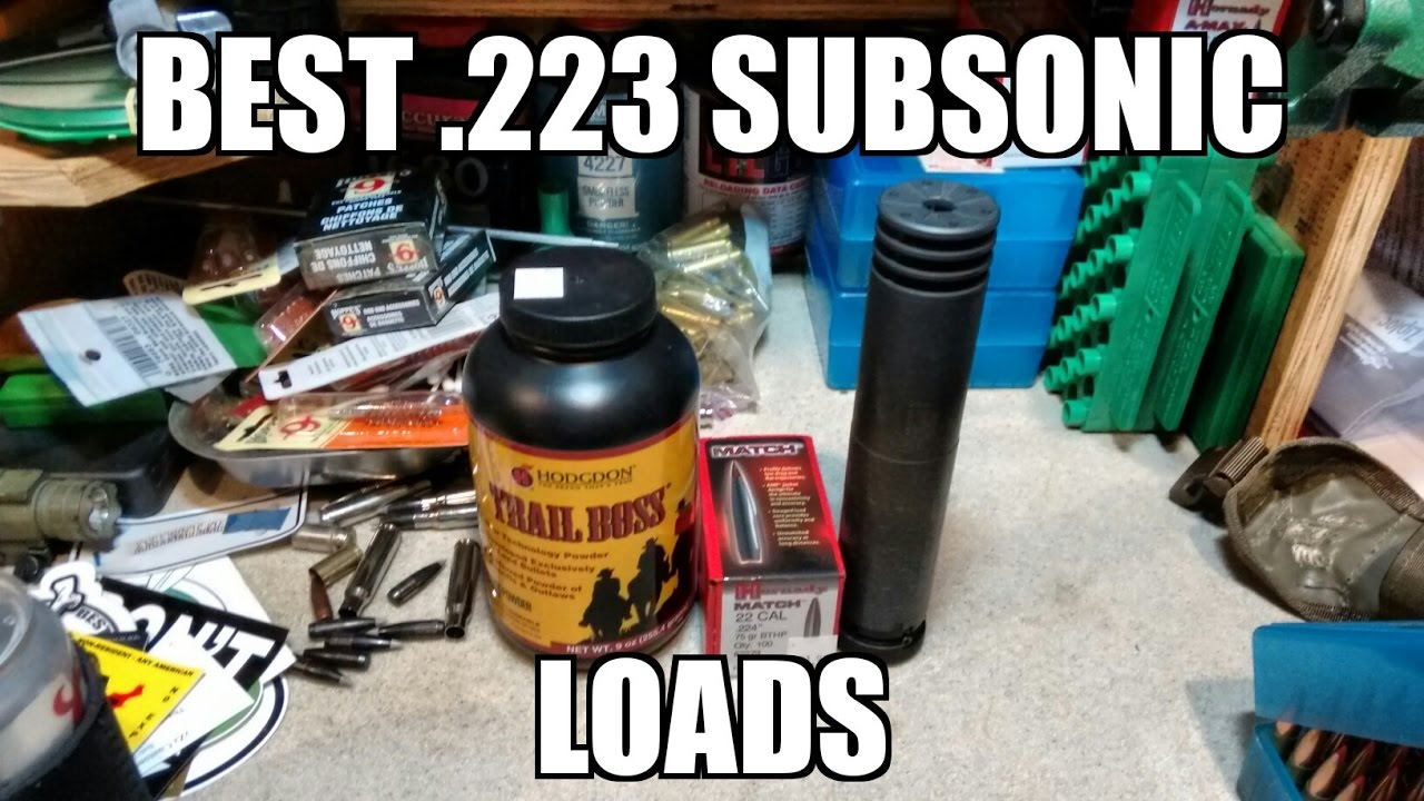 Best 223 or 556 Subsonic Load