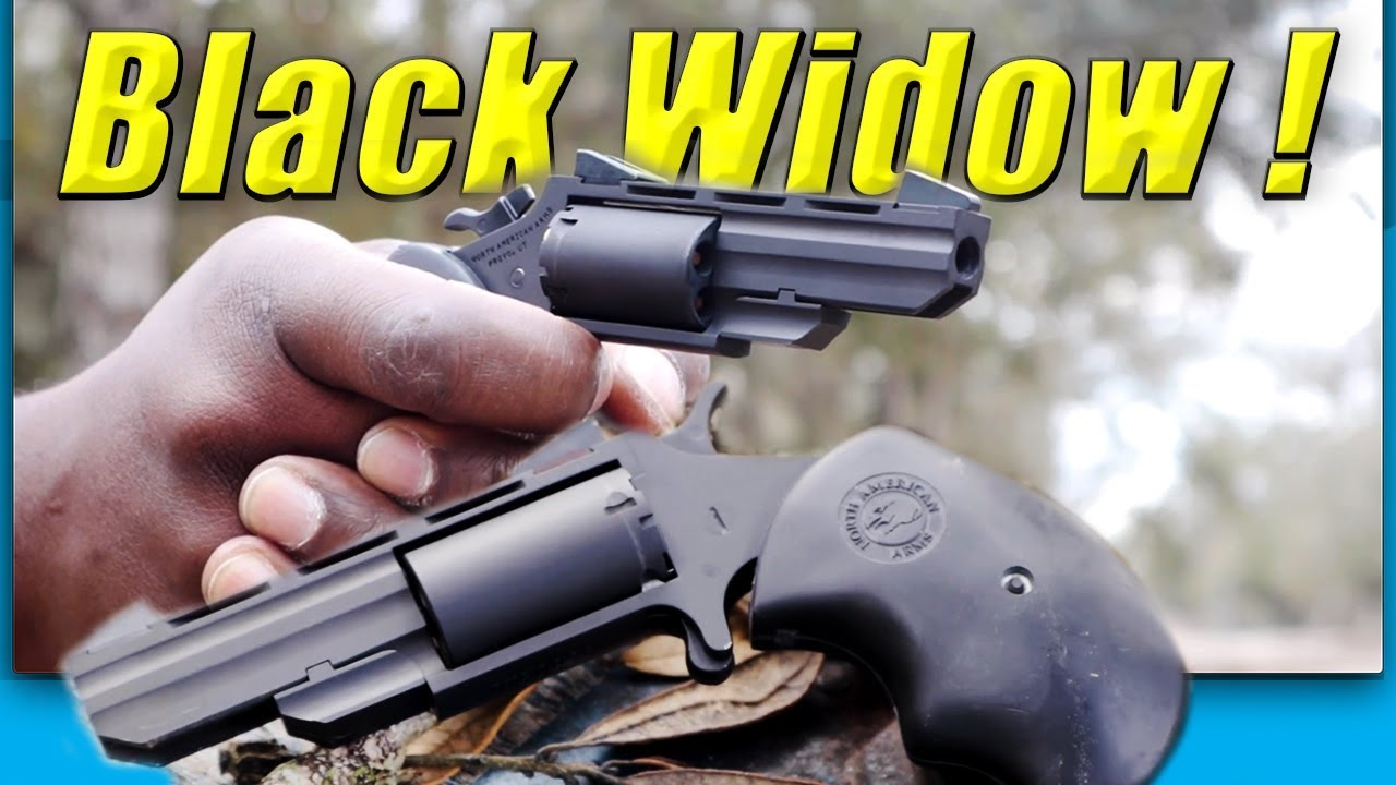 NAA Black Widow 22 Magnum PVD Mini Revolver New For 2019