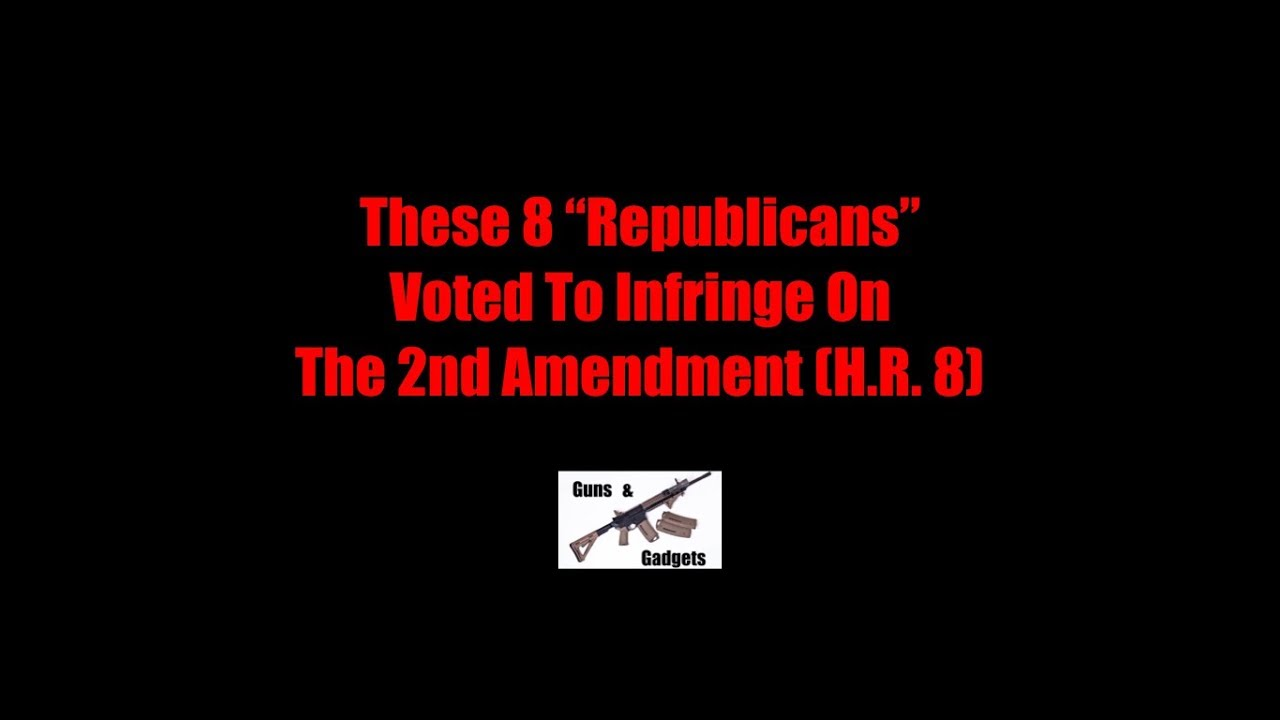 These 8 Republicans Voted To Infringe On The 2nd Amendment