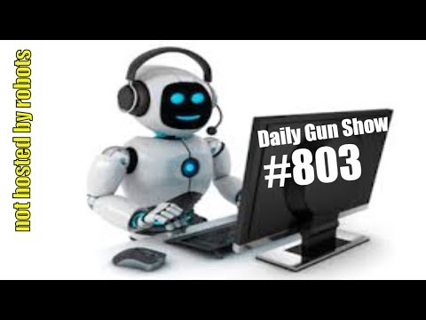 Daily Gun Show #803 not hosted by robots