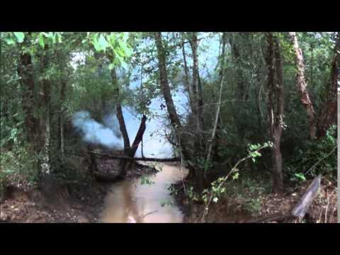 Beaver Dam Fun !!!