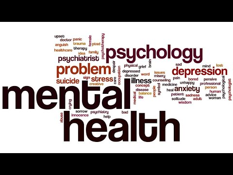 Mental Health Is Not THE Problem