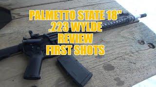 Palmetto State AR15 18
