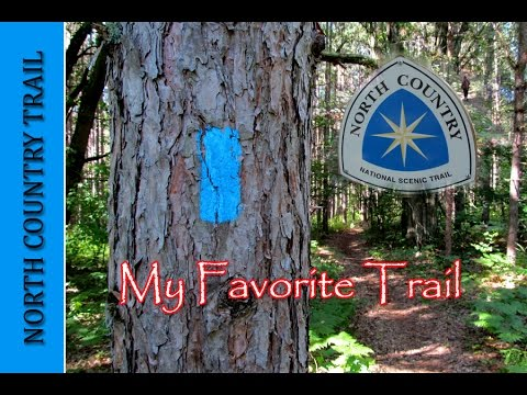 MY FAVORITE HIKING TRAIL