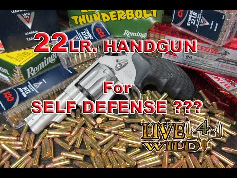 22 LR Handgun for Self Defense ????