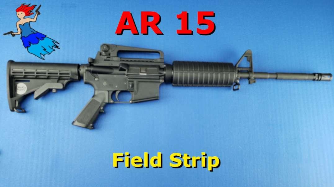 AR 15 Field Strip
