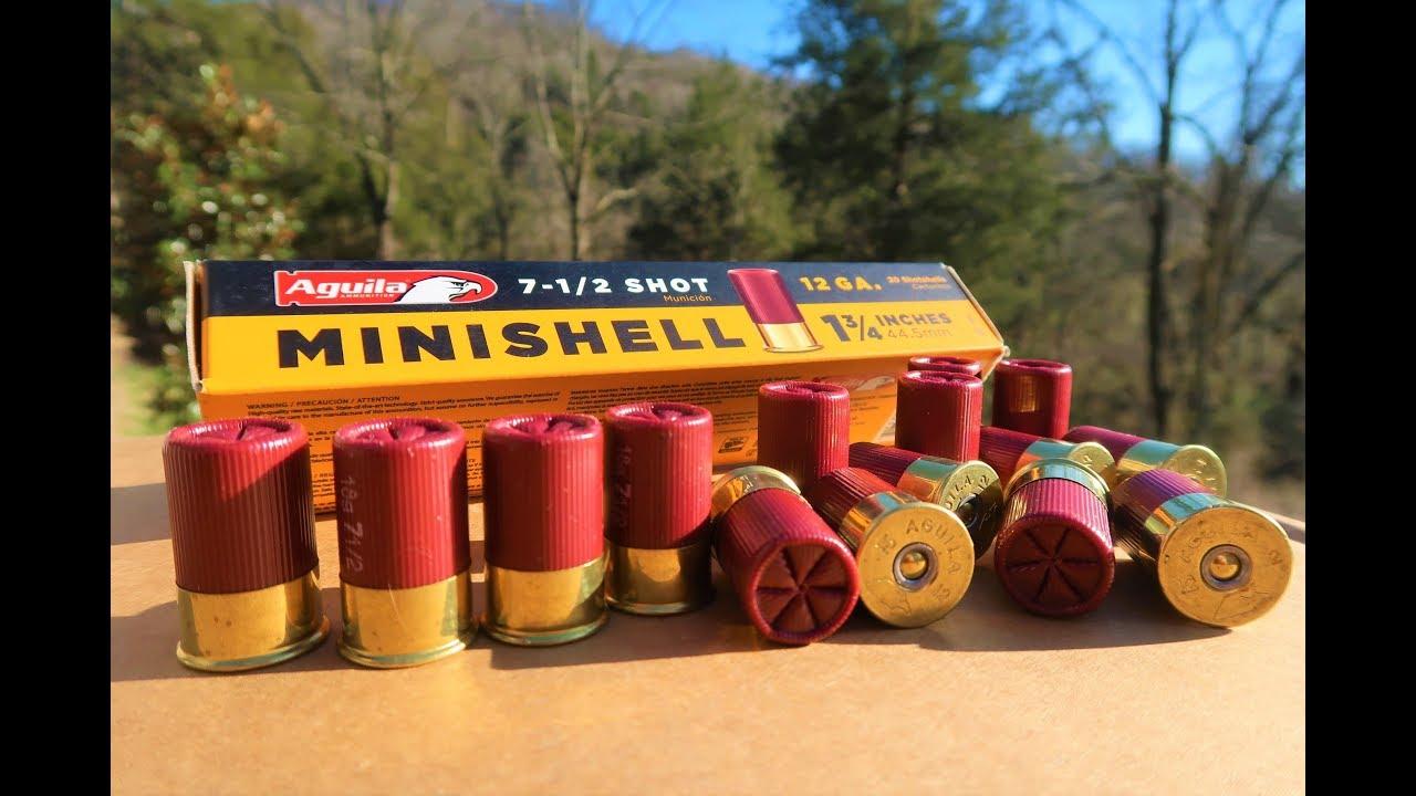 Minishells - Pump Action Shotguns