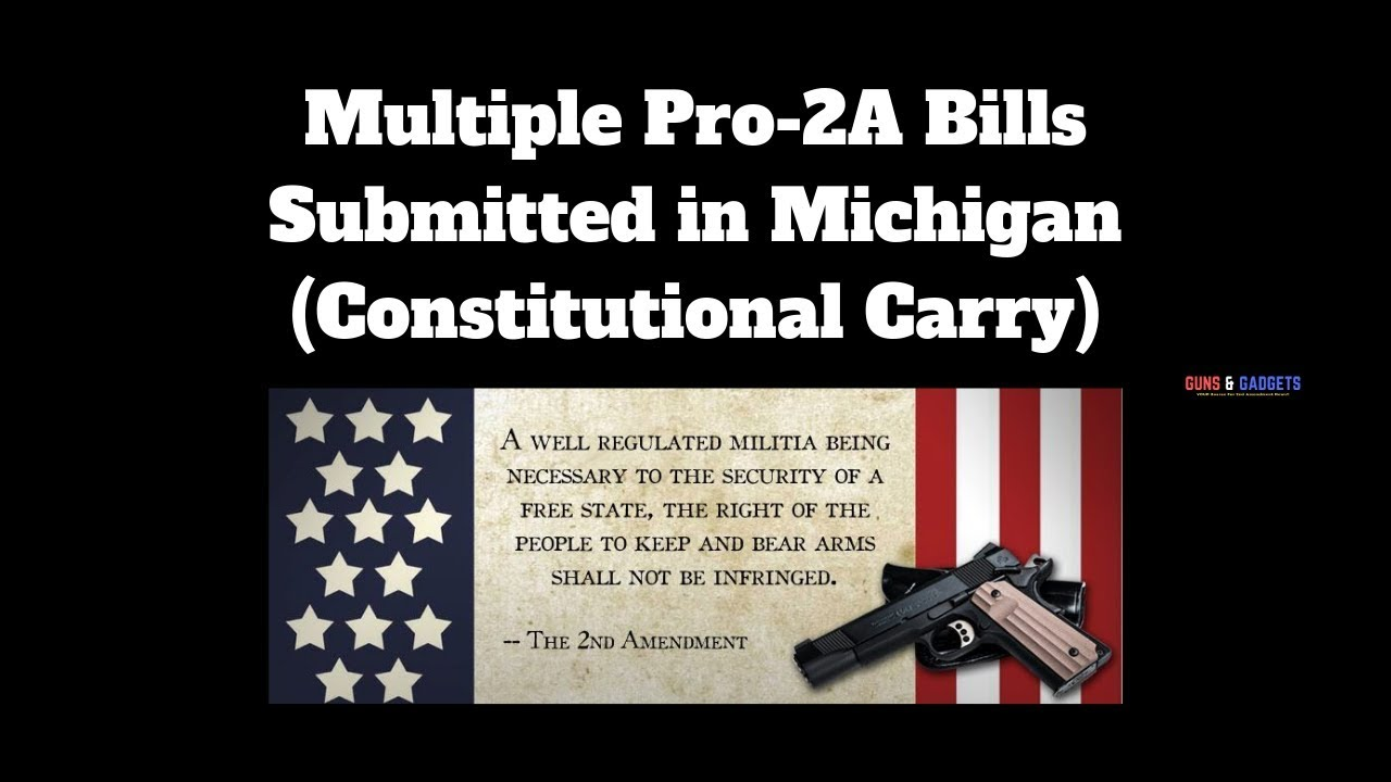 Multiple Pro-2A Bills Submitted in Michigan (Constitutional Carry)