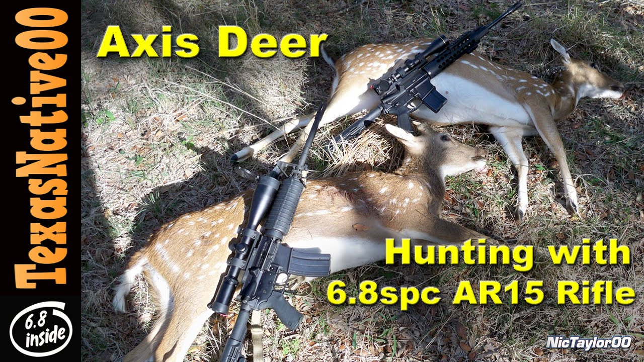Two Axis Deer Taken with 6.8SPC AR15 Rifles