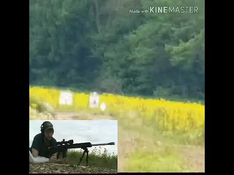 224 Valkyrie Benefit Of A DMR Rifle