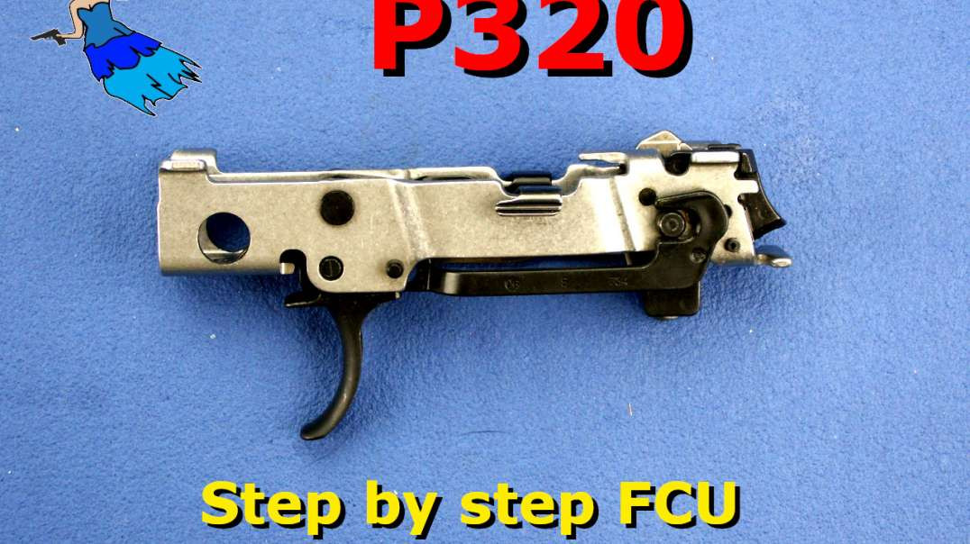 Sig P320 FCU Disassembly and Reassembly