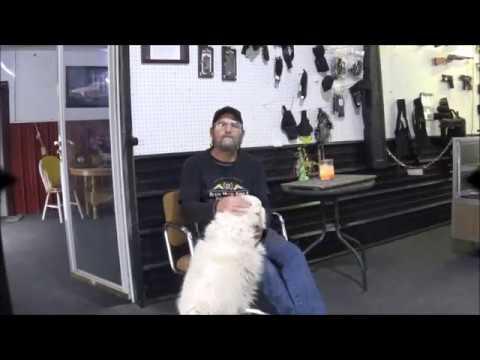 Video Audio Test