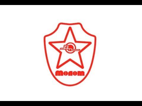 Molot Vepr   ВП logo mean on a Vepr rifle?