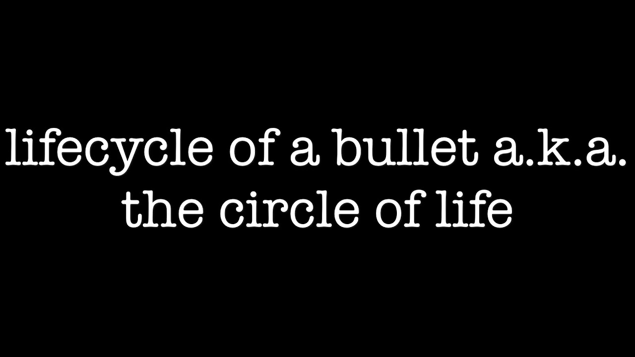 Lifecycle of a bullet showing the reloading circle of life