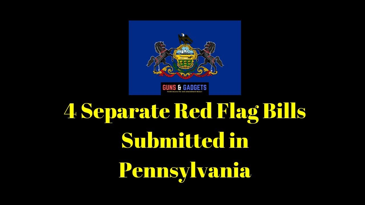 4 Separate Red Flag Bills Submitted in Pennsylvania