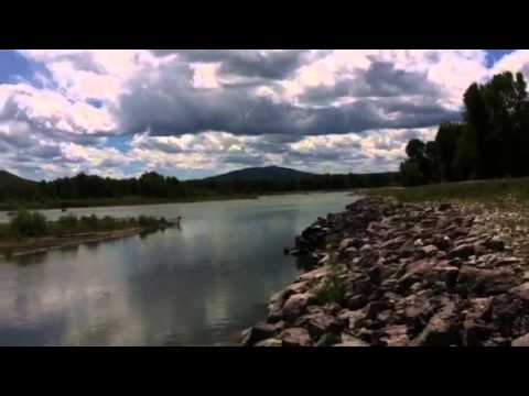 Beaver dam on the snake river