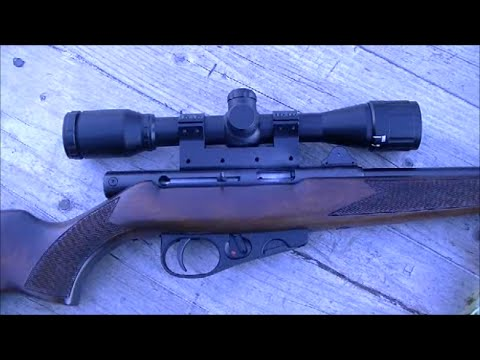 .22 Scope Mount from
