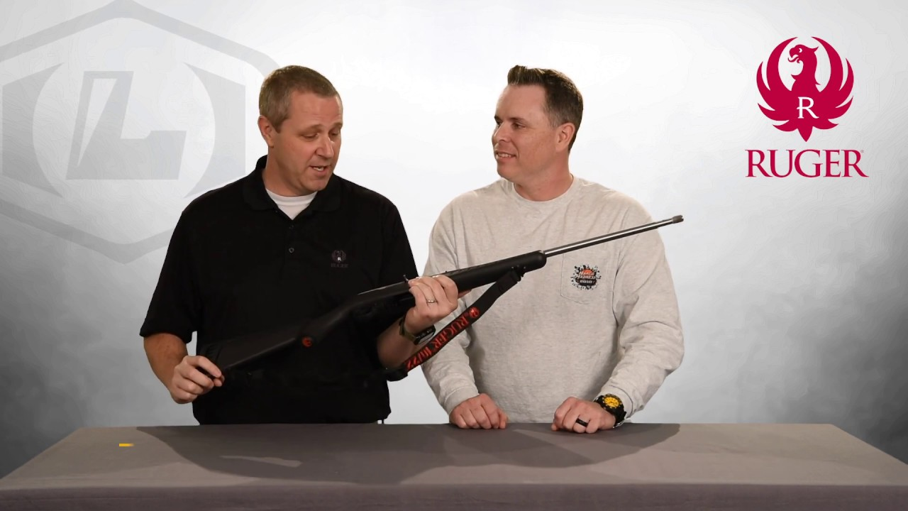 Lipsey's Exclusive: Ruger 10/22 American Stock