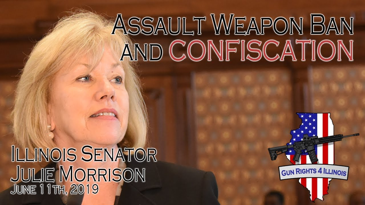 Senator Julie Morrison Town Hall June 11th Assault Weapon Ban and CONFISCATION