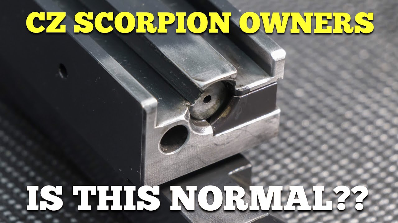 CZ SCORPION OWNERS.... IS THIS NORMAL??