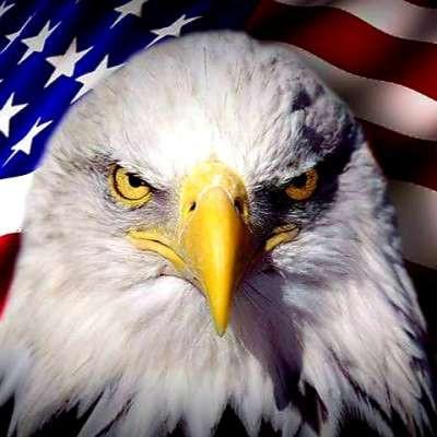 FREEDOM_EAGLE