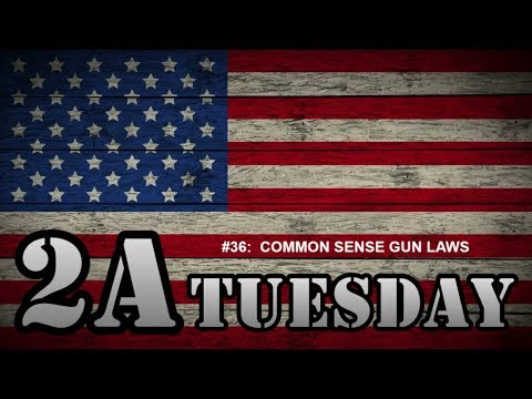 2A Tuesday #036:  COMMON SENSE GUN LAWS