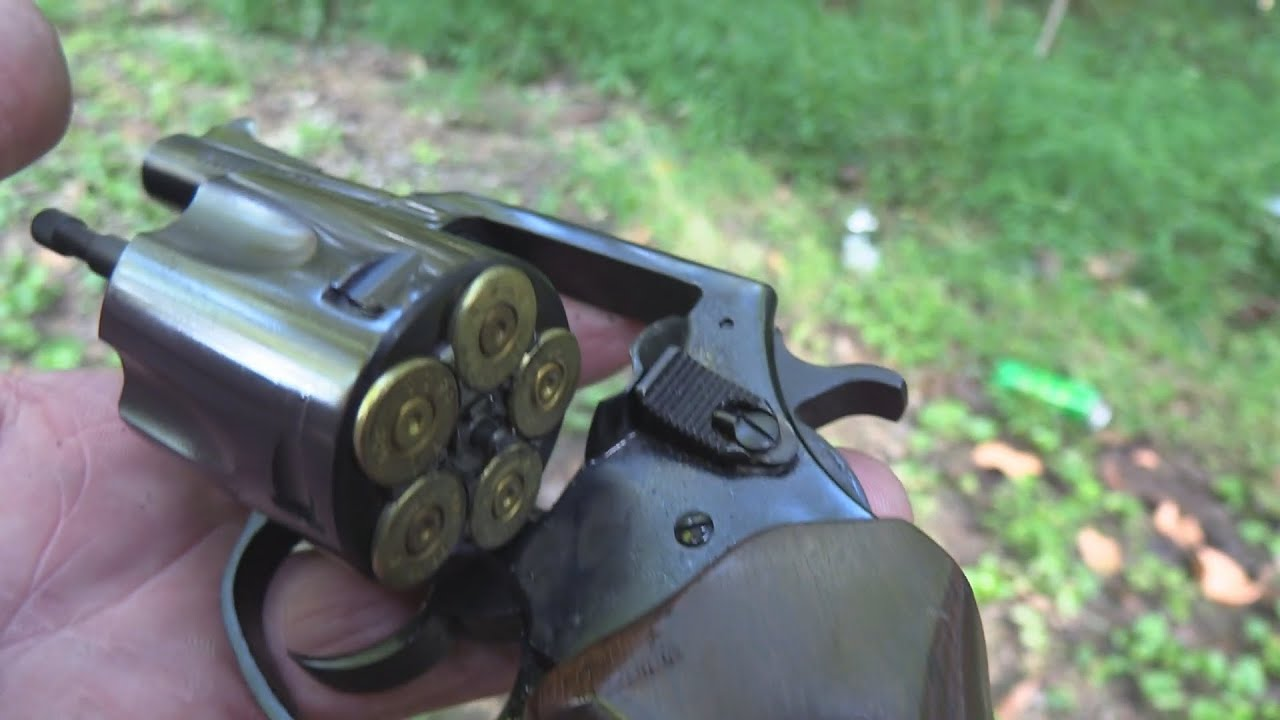 Charter Arms .44 Special  Bull Dog Classic  Close-up