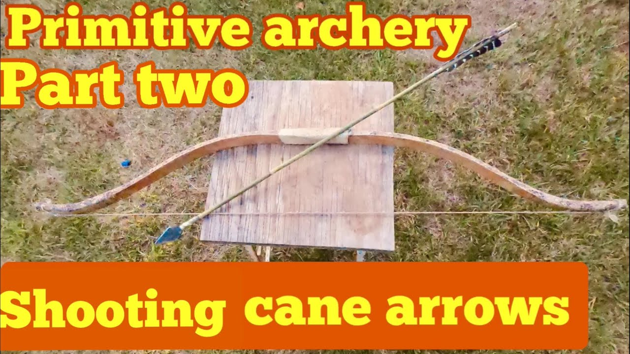 Primitive archery testing the green cane arrow for speed and penetration