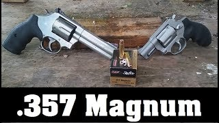 .357 Magnum Ammo Test Episode 4. PMC Gold Starfire
