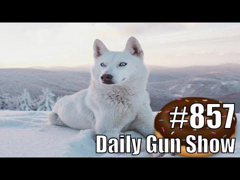 Daily Gun Show #857