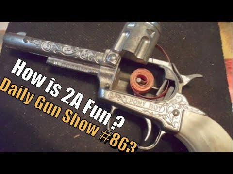 How is 2A Fun ? - Daily Gun Show #863