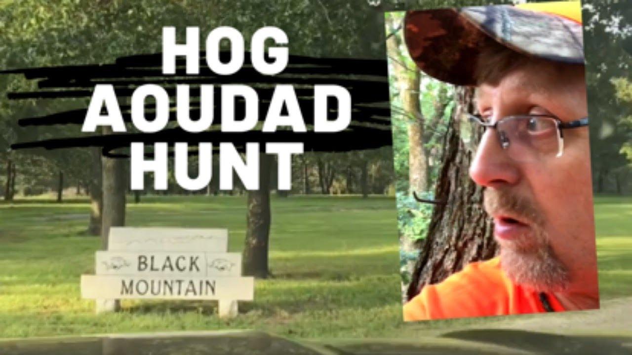 Oklahoma Hog and Aoudad hunt day 1