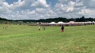 Pennsic 48 - Field Battle - Aug 2019