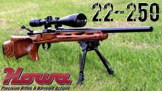 Long Range Varmint Rifle