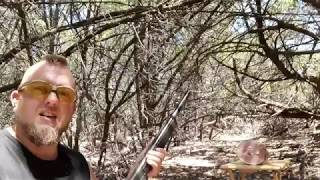 Birdshot For Home Defense? Ammo Test