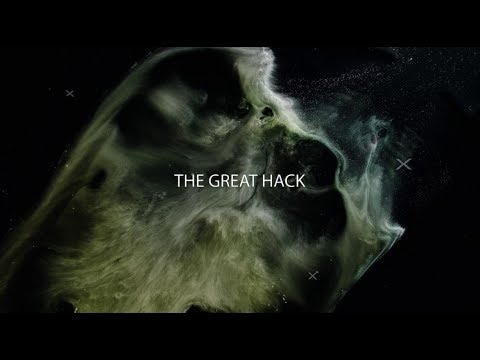 The Great Hack  In The Zone