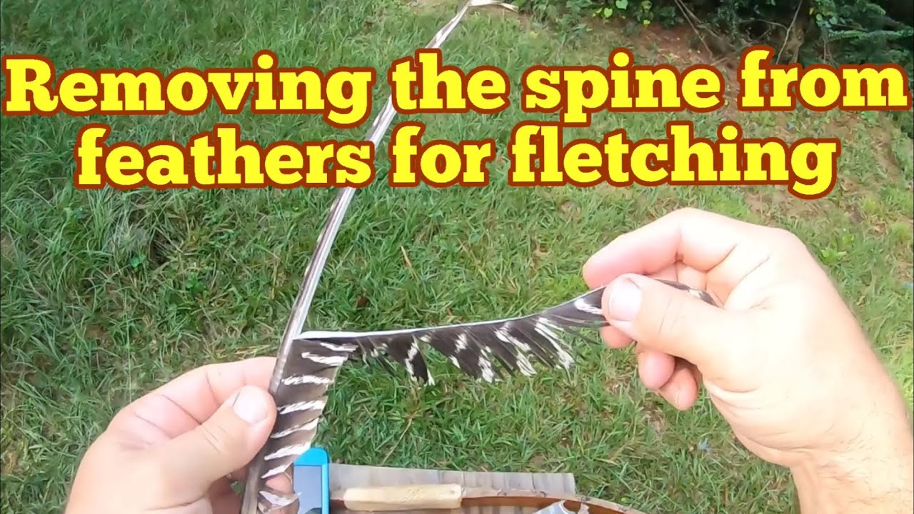 How to remove the spine from turkey feathers for fletching