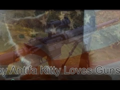 Baby Antifa Kitty Loves Guns