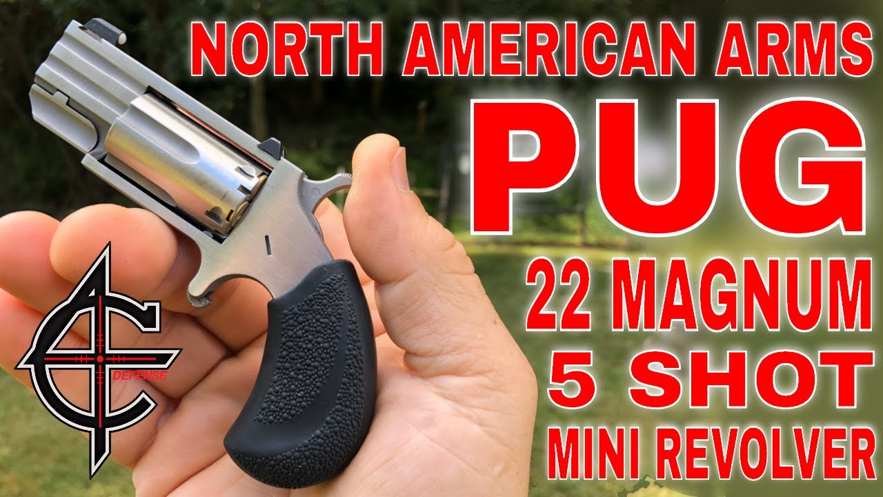 NAA 22 Magnum | PUG