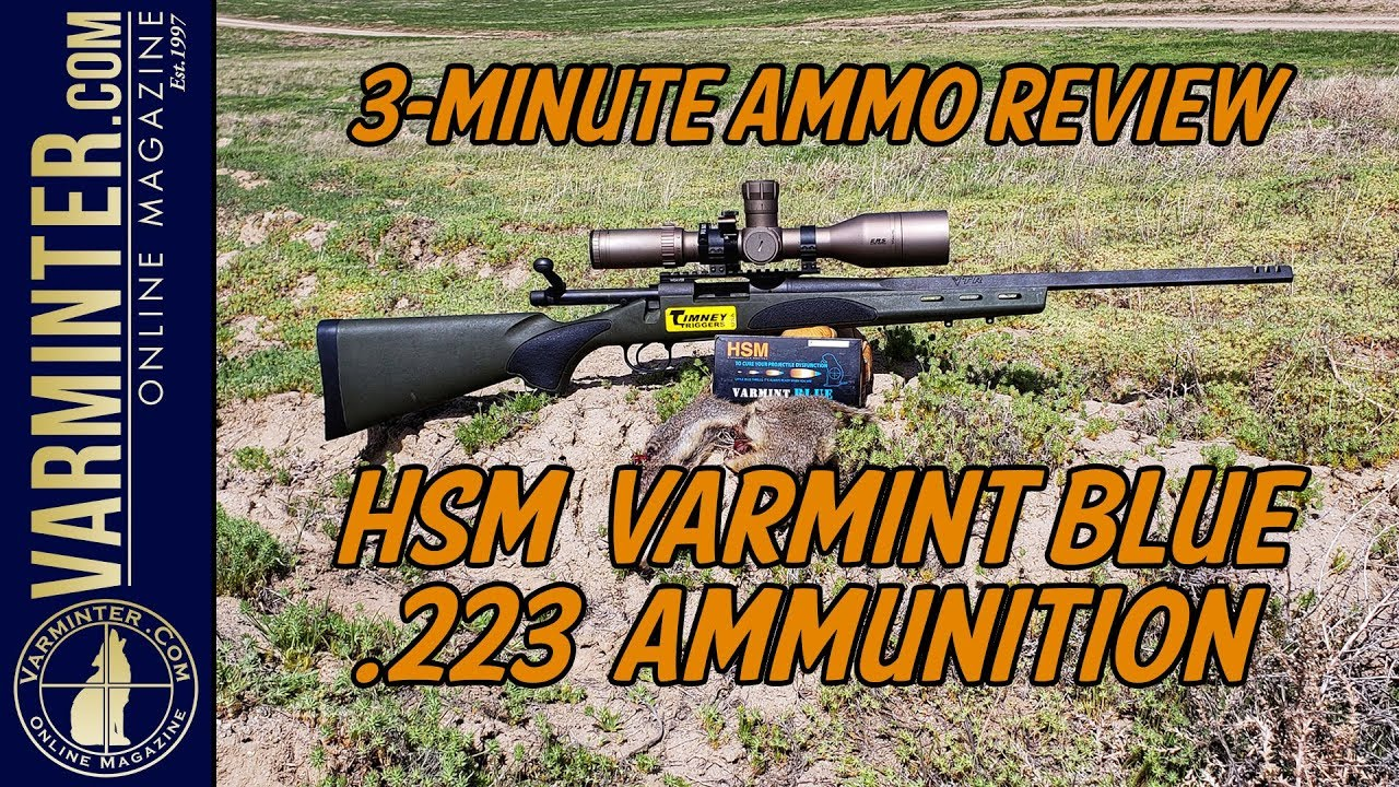HSM Varmint Blue 223 Ammunition - Three Minute Ammo Review and Hunt
