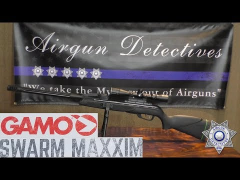 Gamo Swarm Maxxim Multi-Shot, .22 Caliber Air Rifle