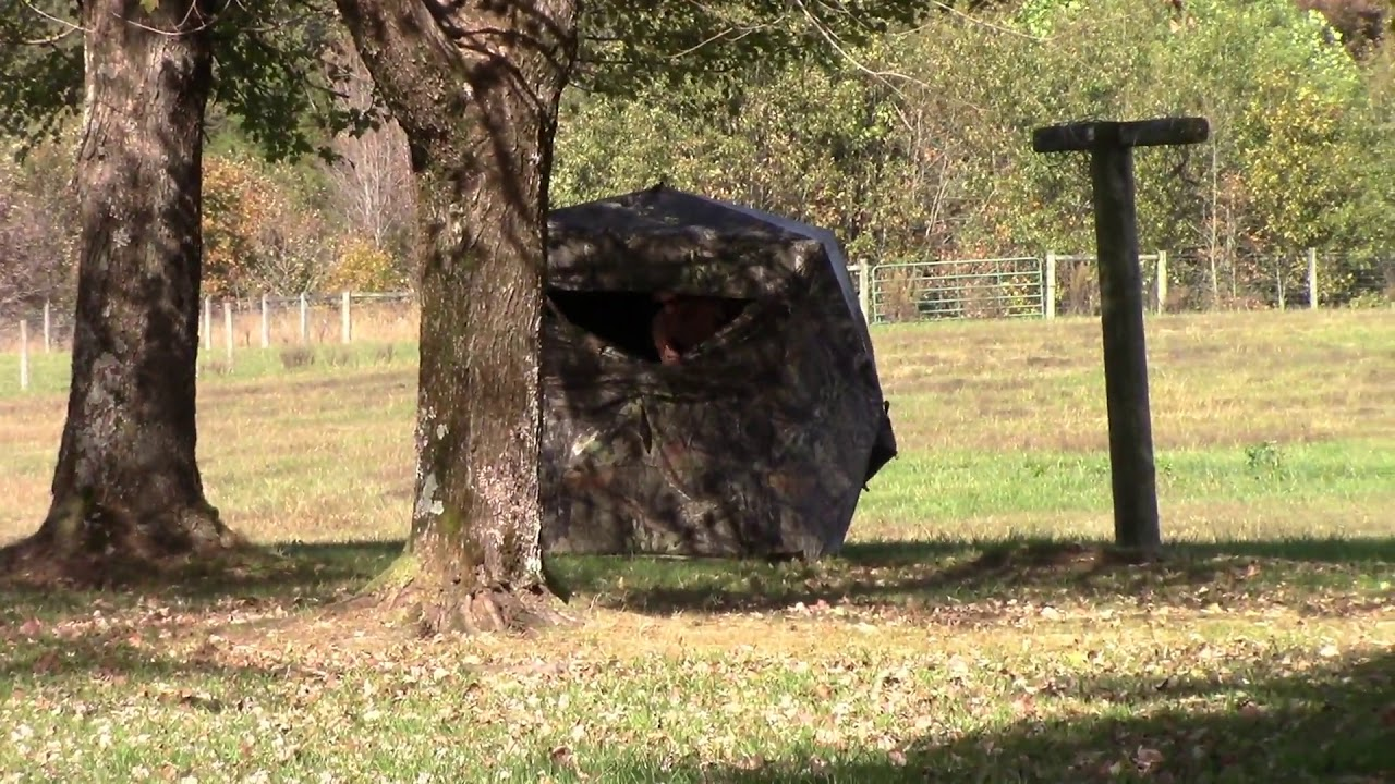 Deer Blind Fail