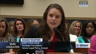 Dems Sit in Silence as Witness Debunks Their 'Assault' Rifle Lies
